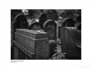 Maňo Štrauch - Tváre života (596)